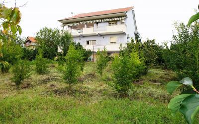 Vila Vilë Me Qira - Adresa: SAUK, PRANË PARKUT TË LIQENIT Tirane